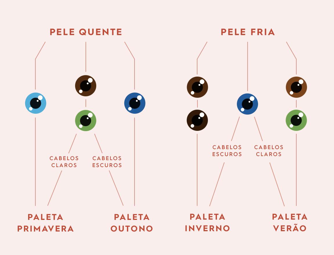 Organograma como descobrir paleta de cores